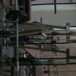 Fitness Royal (68)
